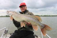 Nils konnte den größten Fisch der Tour verhaften!