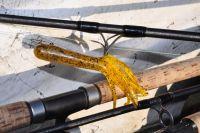 Baitjigger M ist die perfekte Rute für das Fischen mit Tubenködern