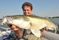 Dünnere Haken - toller Fisch!