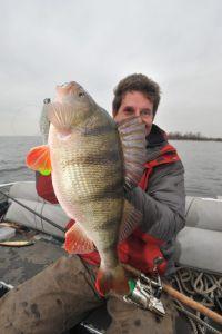 Noch einmal Monster auf Sea-Shad 6 inch...
